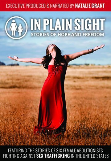 In Plain Sight - Poster